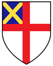 DEUS Shield